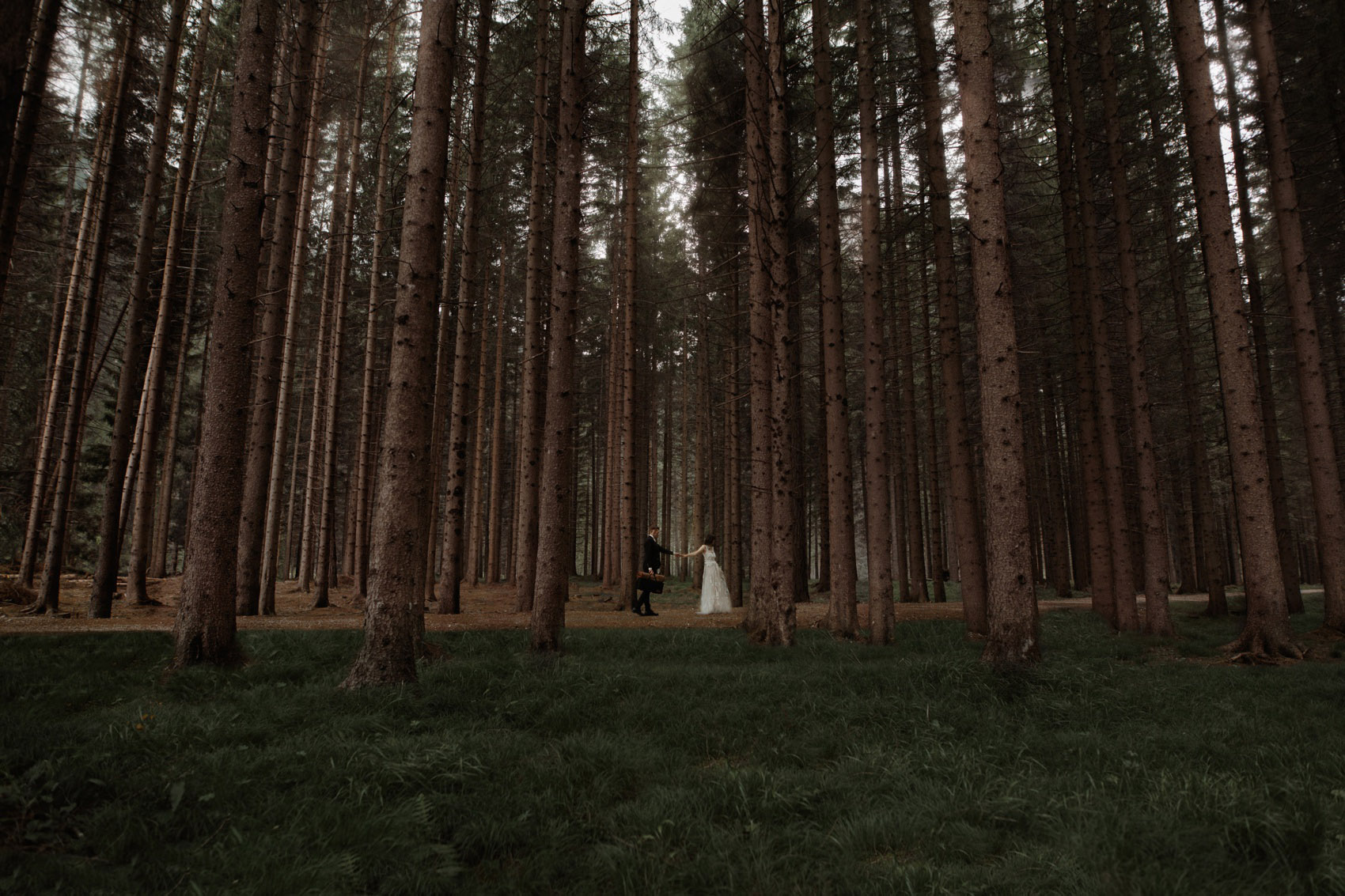 couple walking between trees