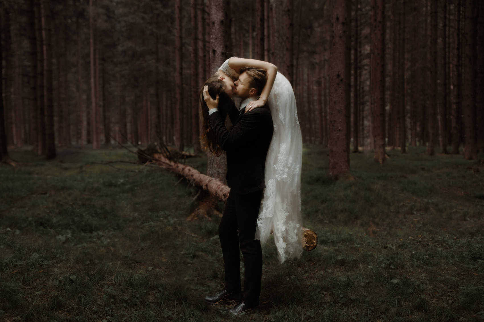 couple on a tree kissing